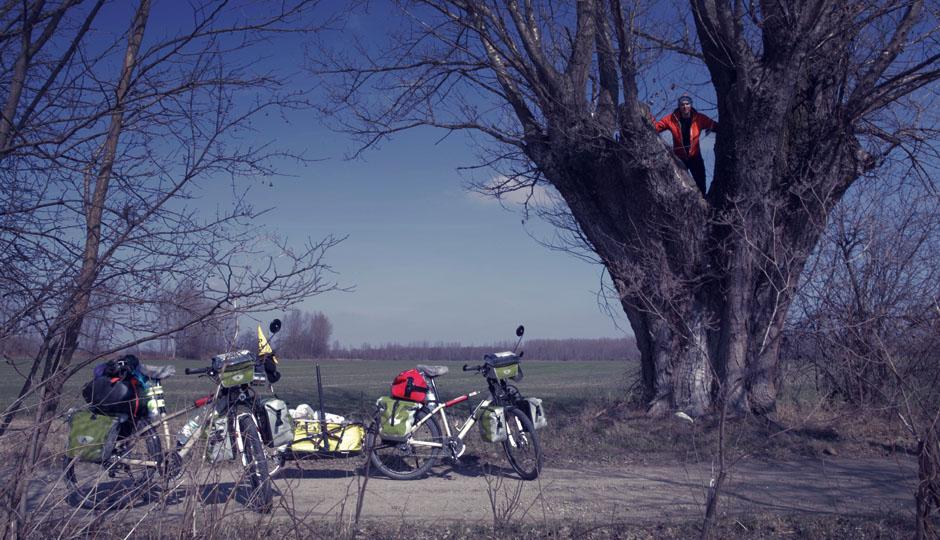 Auf einem ungewollten Umweg, entdecken wir den alten Baum, welcher als Hochsitz dient.