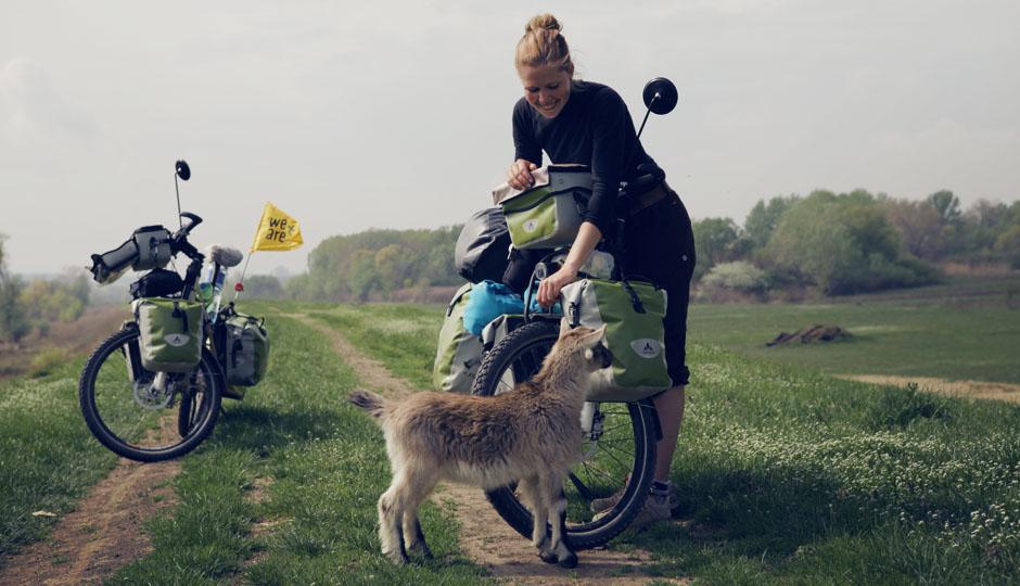 Die Ziege und das Zicklein