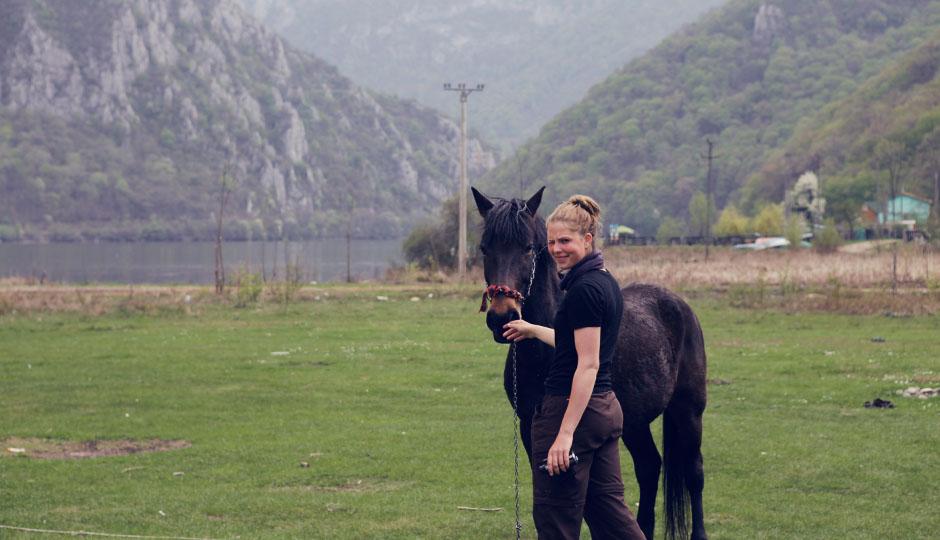 Ein bisschen den vermissten Pferdegeruch schnuppern...