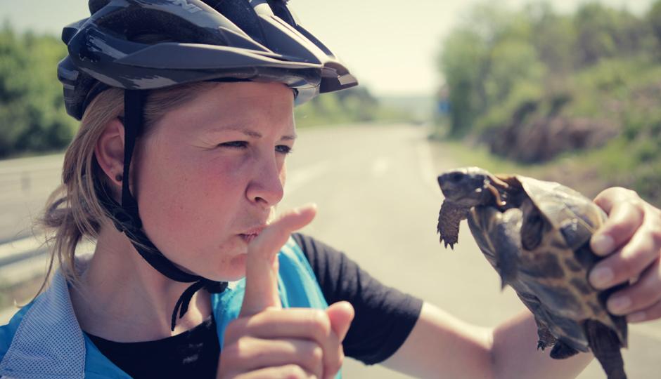 """Schildkröten-Rettungs-Aktion: """"Hörst du kleine Schildkröte. Über die Strasse laufen ist gefährlich!"""""""