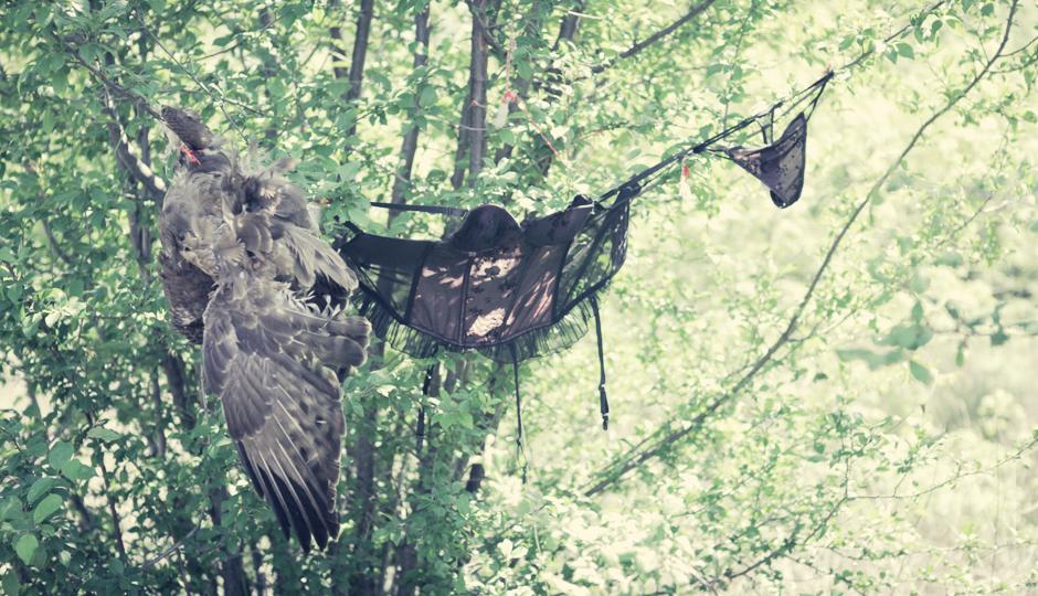 Makaber! Der Vogel hat wohl unabsichtlich die Reizwäsche einer Dame geklaut. Doch die Wäscheleine wurde ihm zum Verhängnis.