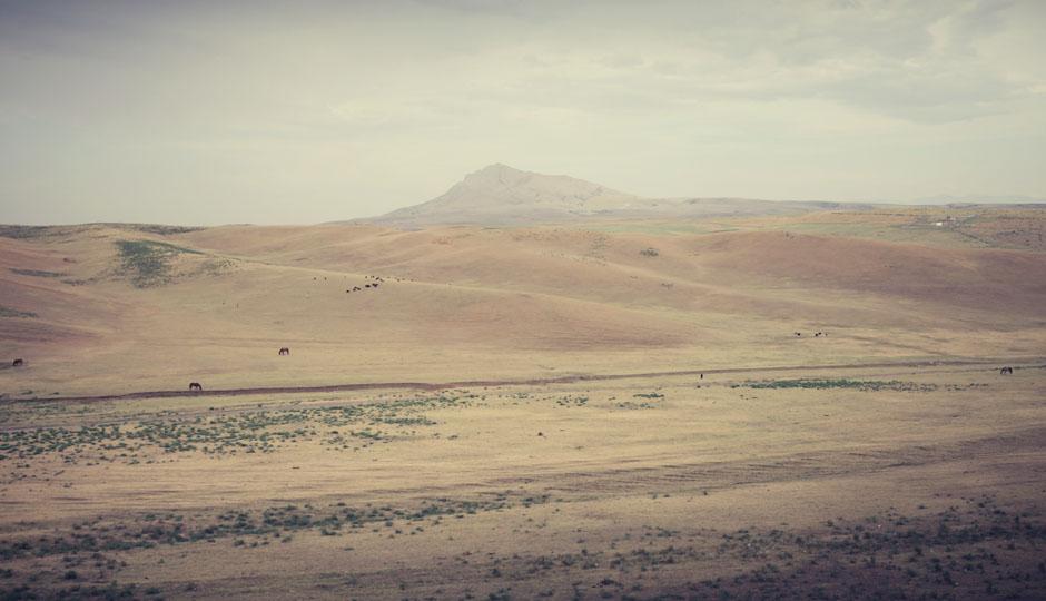Die Landschaft wird nach und nach immer hügeliger...