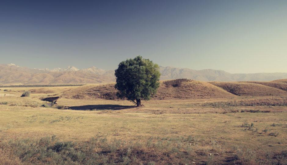 Wieder in Kasachstan. Doch diesmal mit einer fantastischen Aussicht auf die Berge und einigen grünen Oasen.
