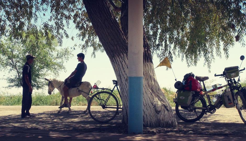 Usbekistan - Land der Esel...
