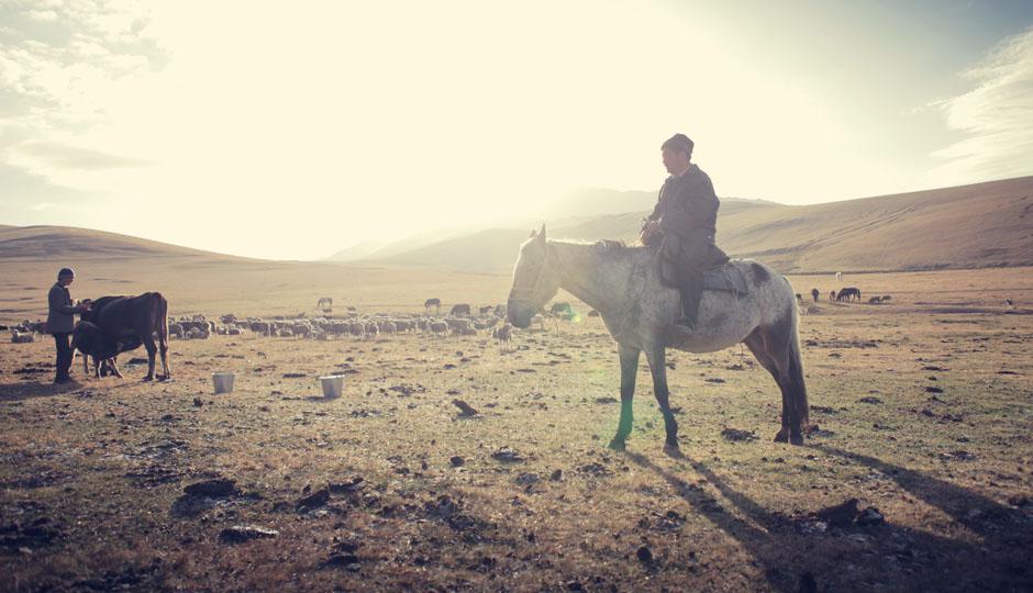 Der Tagesablauf wird vom Vieh bestimmt: Kühe werden gemolken, Pferde und Schafe auf die Wiesen getrieben.
