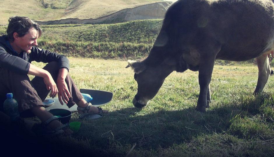 Campingplatz vor dem Pass: Wir sind zu faul zu Spühlen. Die Kuh freut's.