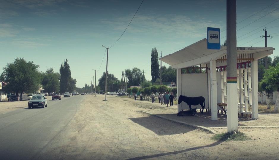Wir verlassen die Stadt und brechen auf in Richtung Issik-Köl. Auf die Frage, ob es dorthin auch einen Bus gibt, konnten die Esel leider keine Antwort geben. Na dann aus eigener Kraft.