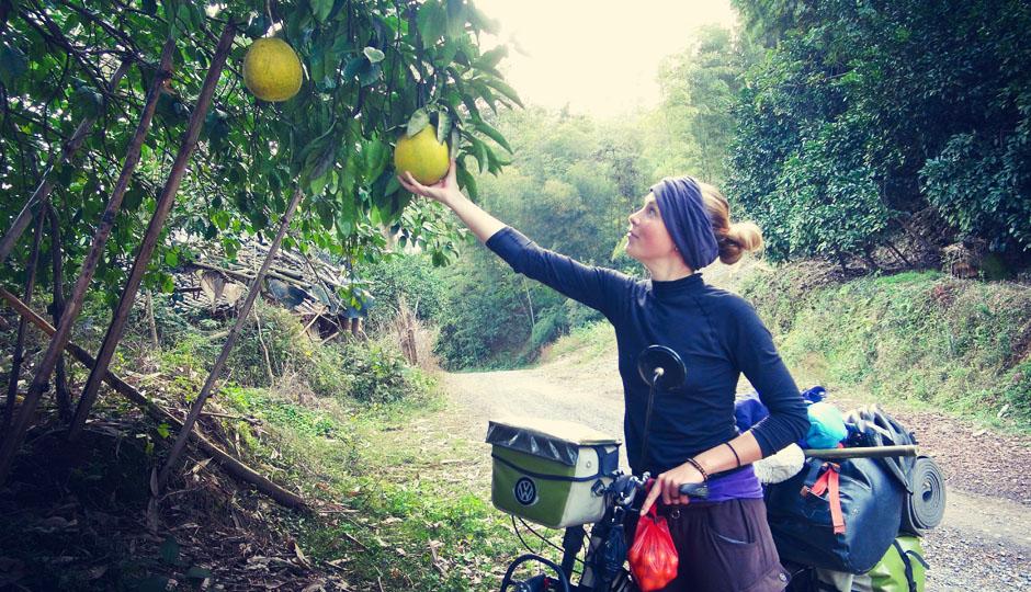 Große Umfrage: Wer weiß, wie diese Früchte heißen?